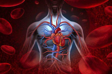 Tratamentul afectiunilor sistemului circulator